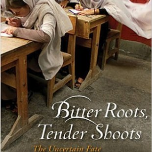 Bitter Roots, Tender Shoots by Sally Armstrong